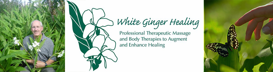 White Ginger Healing